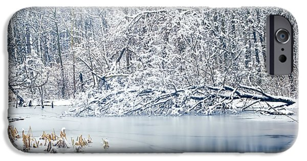 Winter Wonderland 2 IPhone Case by Shara Lee