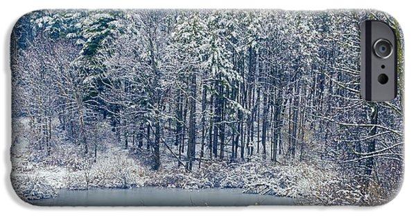 Winter Wonderland 4 IPhone Case by Shara Lee