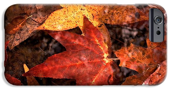 With Love - Autumn Pond IPhone 6s Case by Theresa  Asher