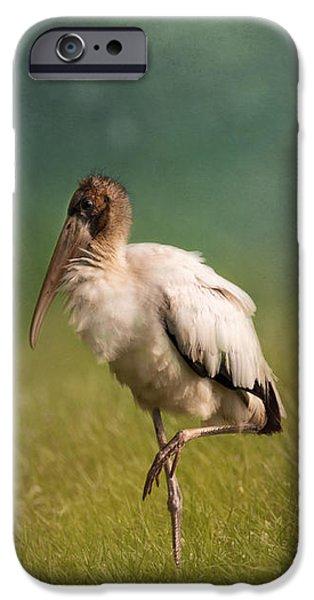 Wood Stork - Balancing IPhone 6s Case by Kim Hojnacki