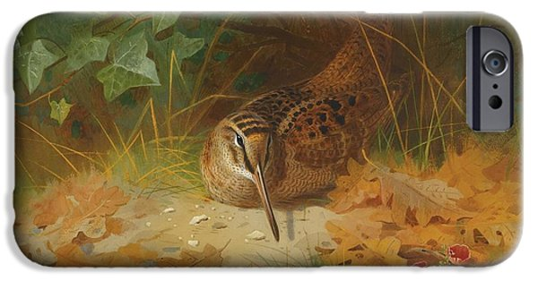 Woodcock IPhone 6s Case by Celestial Images