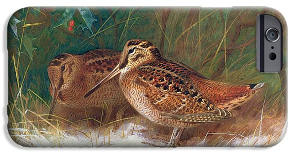 Woodcock In The Undergrowth IPhone 6s Case by Archibald Thorburn