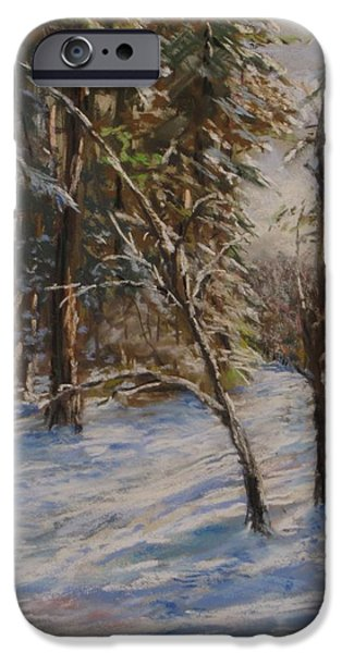 Woods And Snow At Two Below IPhone Case by Jack Skinner