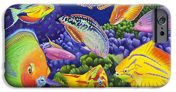 Wrasse Appeal IPhone Case by Carolyn Steele