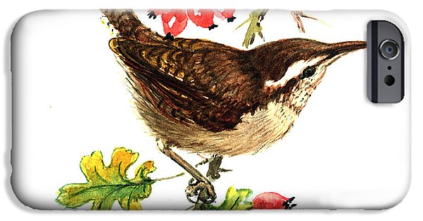 Wren And Rosehips IPhone 6s Case by Nell Hill