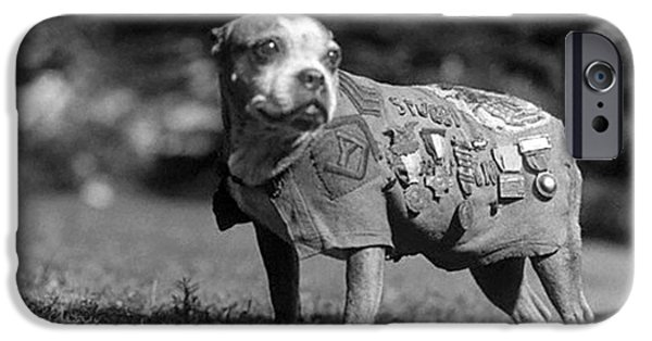 Wwi, Sergeant Stubby, American War Dog IPhone Case by Science Source