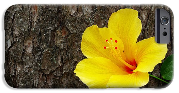 Yellow Flower IPhone 6s Case by Carlos Caetano