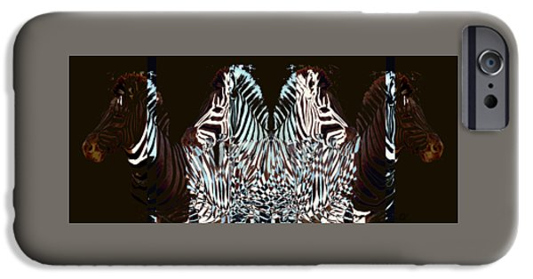 Zebraic Equation IPhone Case by Stephanie Grant