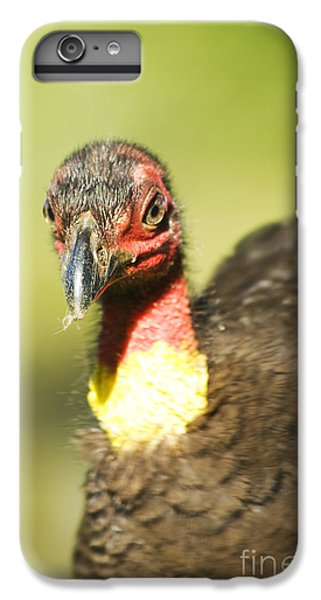 Brush Scrub Turkey IPhone 6s Plus Case by Jorgo Photography - Wall Art Gallery