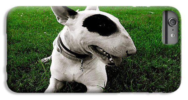 Bull Terrier  IPhone 6s Plus Case by Marvin Blaine