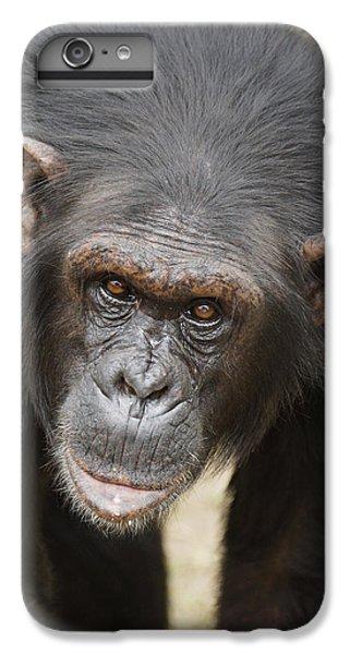 Chimpanzee Portrait Ol Pejeta IPhone 6s Plus Case by Hiroya Minakuchi