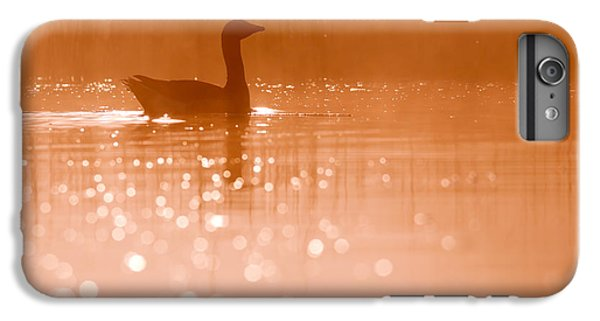 Early Morning Magic IPhone 6s Plus Case by Roeselien Raimond