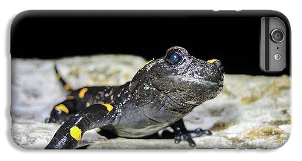 Fire Salamander (salamandra Salamandra) IPhone 6s Plus Case by Photostock-israel