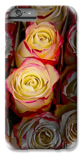 Love Is A Rose IPhone 6s Plus Case by Al Bourassa