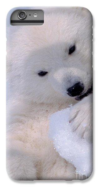 Polar Bear Cub IPhone 6s Plus Case by Mark Newman