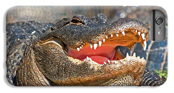 American Alligator IPhone 6s Plus Case by Millard H. Sharp