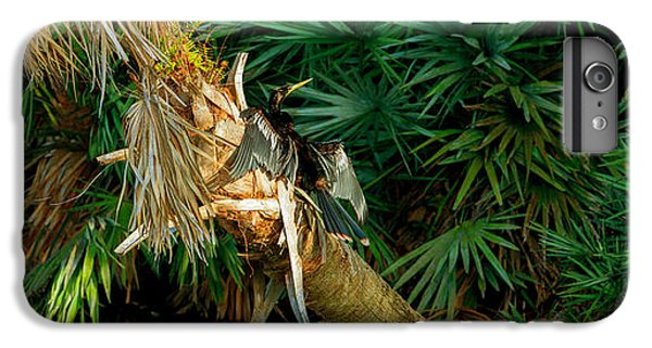 Anhinga Anhinga Anhinga On A Tree IPhone 6s Plus Case by Panoramic Images