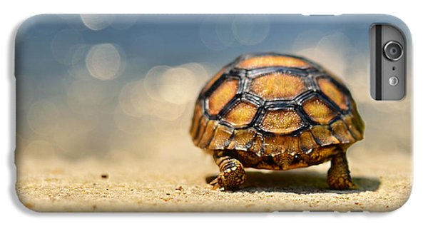 Road Warrior IPhone 6s Plus Case by Laura Fasulo