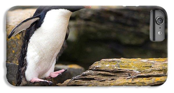 Rockhopper Penguin IPhone 6s Plus Case by John Shaw