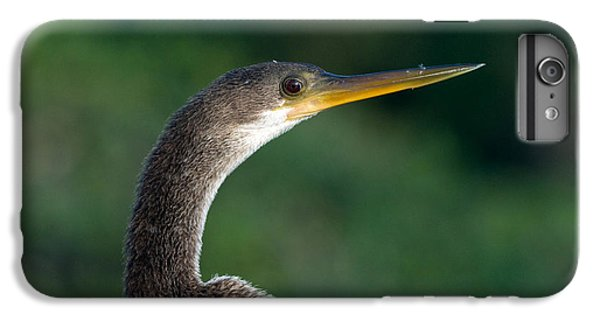 Anhinga IPhone 6s Plus Case by Mark Newman