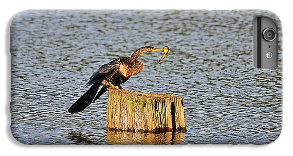 American Anhinga Angler IPhone 6s Plus Case by Al Powell Photography USA