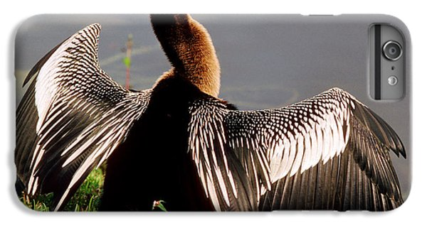 Anhinga Anhinga Anhinga Drying Plumage IPhone 6s Plus Case by Millard H. Sharp