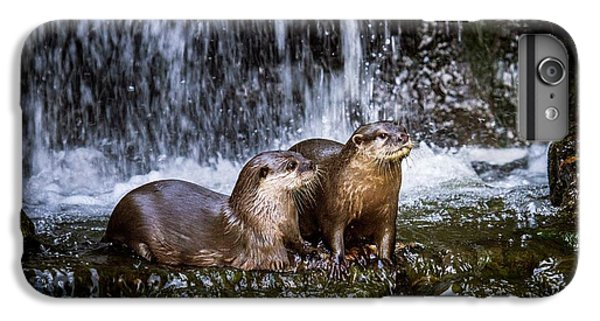 Asian Small-clawed Otters IPhone 6s Plus Case by Paul Williams