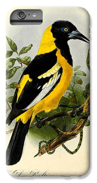 Baltimore Oriole IPhone 6s Plus Case by J G Keulemans