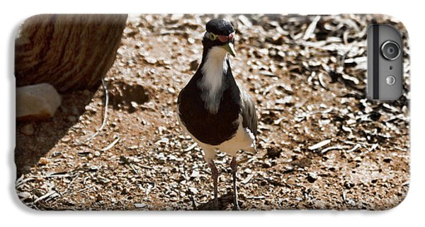 Banded Lapwing IPhone 6s Plus Case by Douglas Barnard
