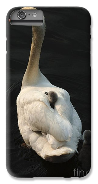 Birds Of A Feather Stick Together IPhone 6s Plus Case by Bob Christopher