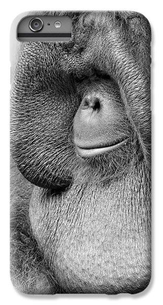Bornean Orangutan V IPhone 6s Plus Case by Lourry Legarde