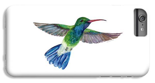 Broadbilled Fan Tail Hummingbird IPhone 6s Plus Case by Amy Kirkpatrick