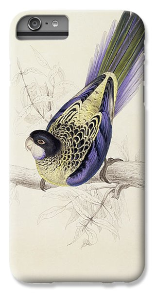Browns Parakeet IPhone 6s Plus Case by Edward Lear