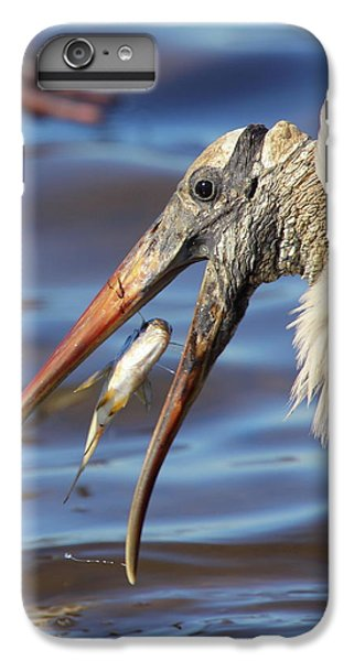 Catch Of The Day IPhone 6s Plus Case by Bruce J Robinson