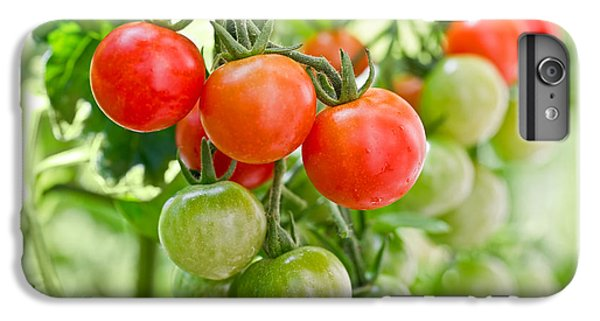 Cherry Tomatoes IPhone 6s Plus Case by Delphimages Photo Creations