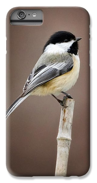 Chickadee IPhone 6s Plus Case by Bill Wakeley