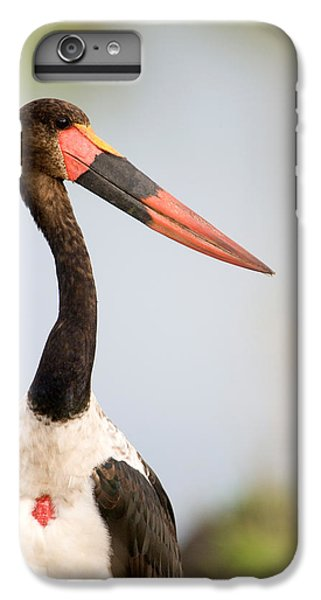 Close-up Of A Saddle Billed Stork IPhone 6s Plus Case by Panoramic Images
