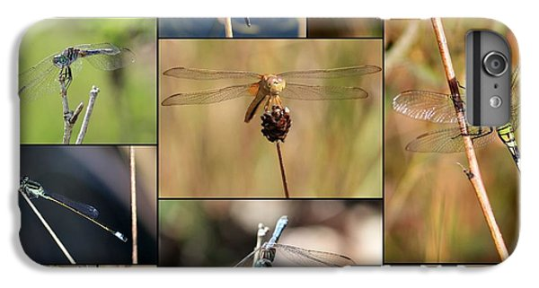 Collage Marsh Life IPhone 6s Plus Case by Carol Groenen