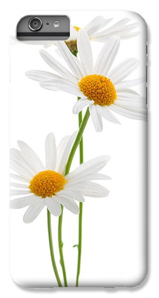 Daisies On White Background IPhone 6s Plus Case by Elena Elisseeva