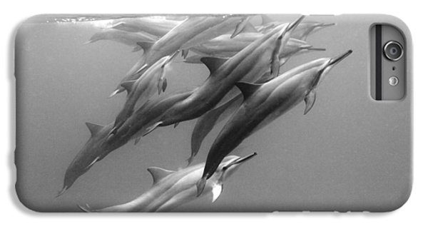 Dolphin Pod IPhone 6s Plus Case by Sean Davey