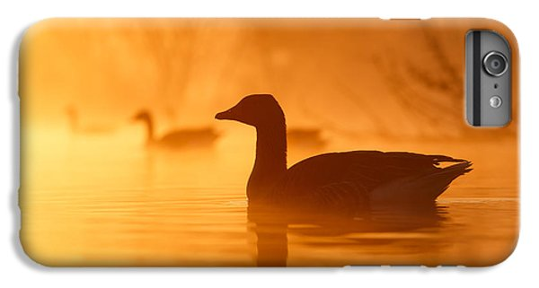 Early Morning Mood IPhone 6s Plus Case by Roeselien Raimond