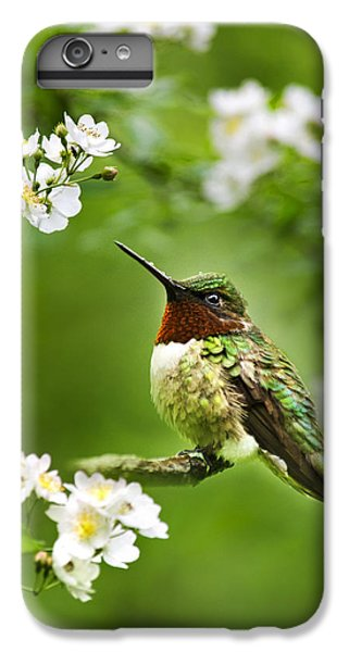 Fauna And Flora - Hummingbird With Flowers IPhone 6s Plus Case by Christina Rollo
