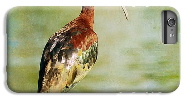 Glossy Ibis IPhone 6s Plus Case by Fraida Gutovich