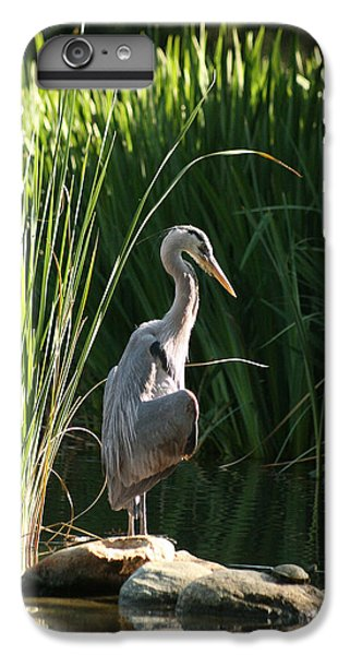 Great Blue Heron IPhone 6s Plus Case by Ellen Henneke