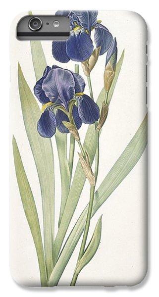 Iris Germanica Bearded Iris IPhone 6s Plus Case by Pierre Joseph Redoute