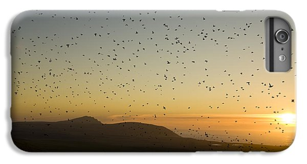 Least Auklets, Returning To Their Nest IPhone 6s Plus Case by Brian Guzzetti