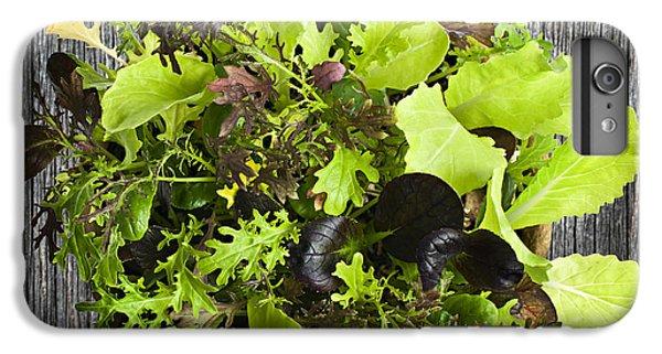 Lettuce Seedlings IPhone 6s Plus Case by Elena Elisseeva