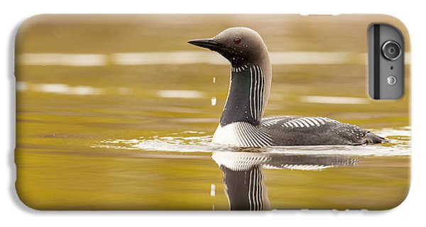 Looking For The Intruder IPhone 6s Plus Case by Tim Grams