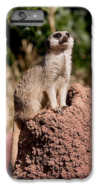 Lookout Post IPhone 6s Plus Case by Michelle Wrighton