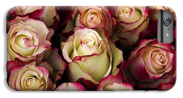 Love Is A Rose IIi IPhone 6s Plus Case by Al Bourassa